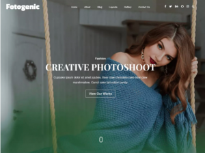 best wordpress theme Fotogenic