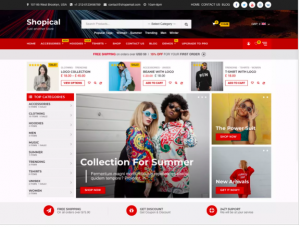 best wordpress theme Shopical