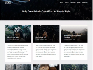 best wordpress theme Simple Best
