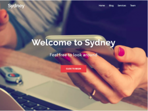 best wordpress theme Sydney