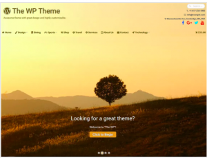 best wordpress theme WP Theme
